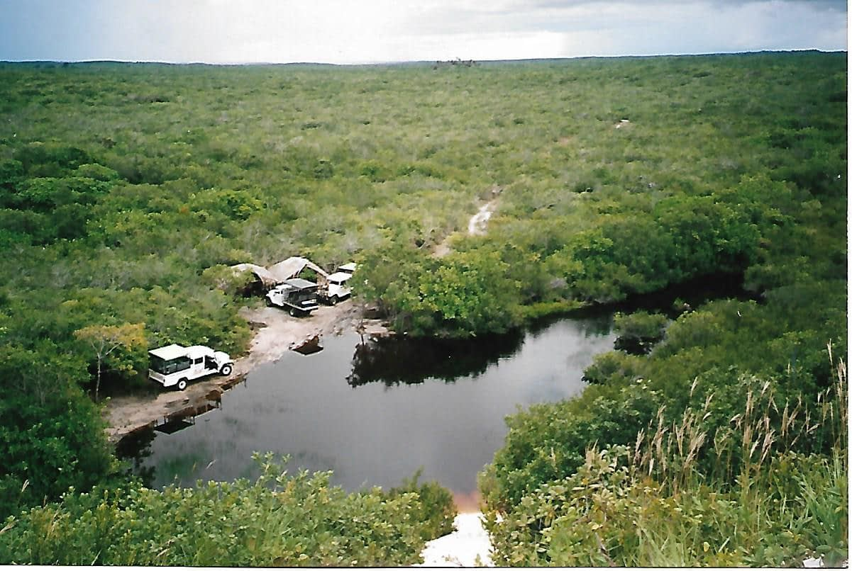 3 white jeeps in beside a creek surrounded by lush green forest