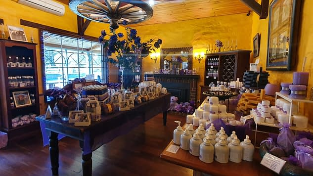 inside Cape Lavender shop with yellow walls, wooden floorboards with displays of all products made of lavender