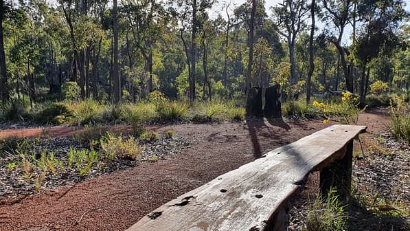 A wooden bench overlooking the paved pathway and bushland
