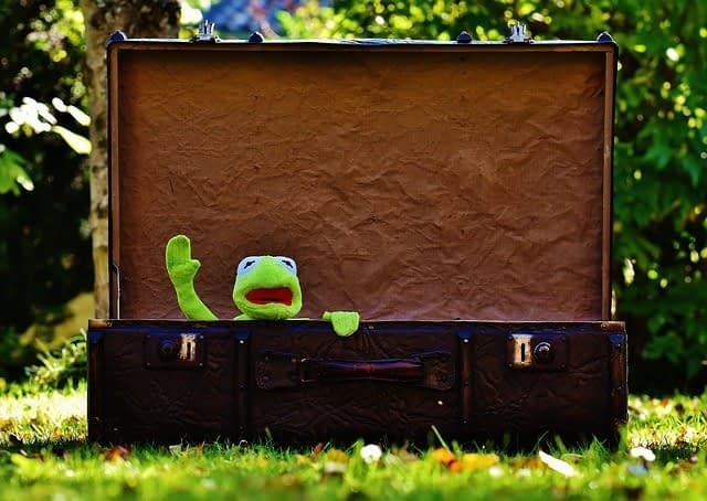 kermit the frog waving from inside an old suitcase