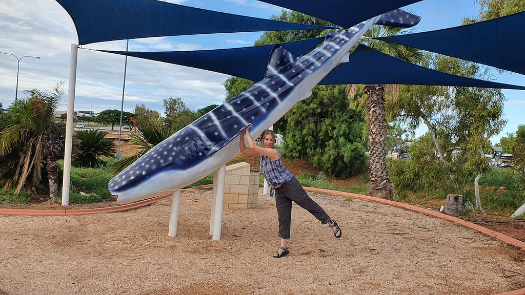 person hanging of the fin of a fibreglass whale shark