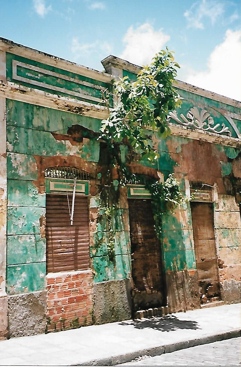 rustic green and red building facade with vegetation growing out of it
