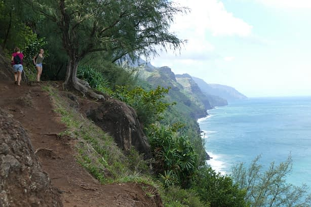 muddy hiking trails on the left overlooking coastal cliffs and the ocean on the right