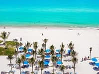 blue coloured beach umbrellas amongst palm trees with turquoise coloured water in background